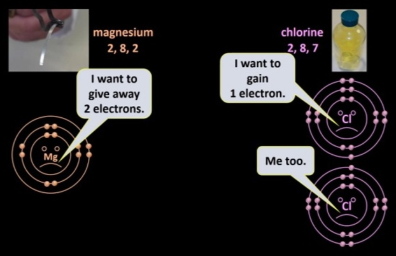 Mg_and_Cl_atoms_want_stuff