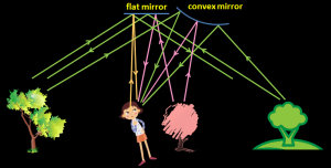 flat_mirror_convex_mirror_field_of_view