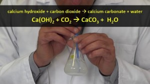reaction_of_limewater_with_carbon_dioxide