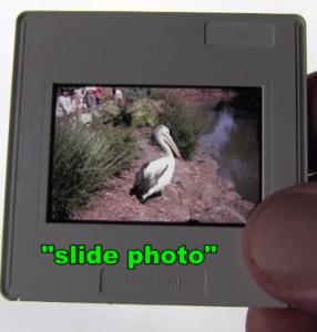 slide_photo_circa_1989
