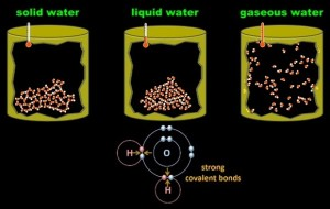 solid_liquid_and_gaseous_water