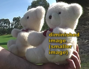 teddy_bear_diminished_image_convex_mirror