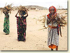 women_carrying_firewood